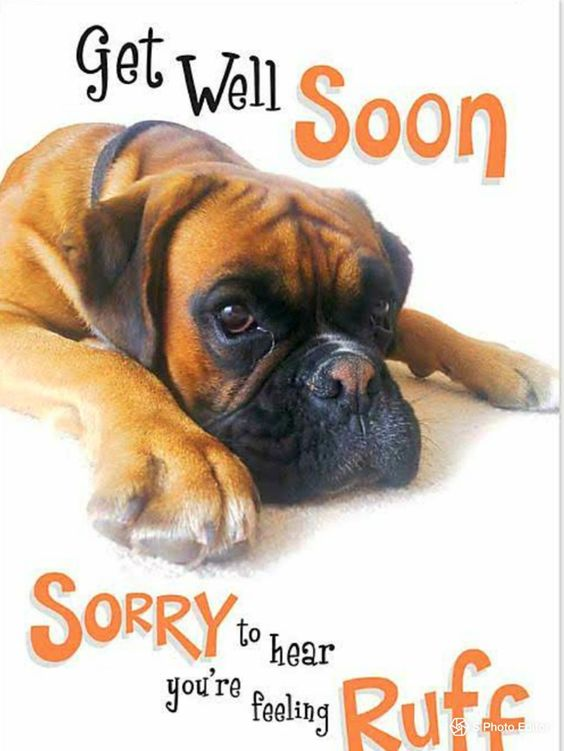 Get well soon. Sorry to hear you're peeling ruff
