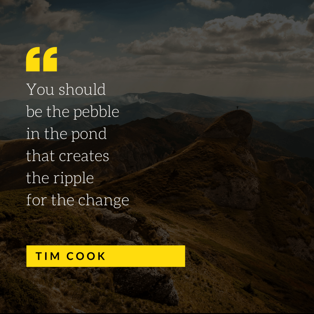 You-should-be-the-pebble-in-the-pond-that-creates-the-ripple-for-the-change-Tim-Cook